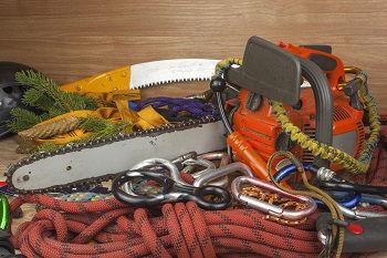 Emergency-Tree-Removal-Service-Redmond-WA