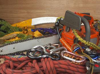 Emergency-Tree-Removal-Service-covington-WA