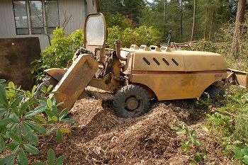 Stump-Grinding-Service-Puyallup-WA