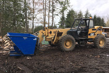 Stump-Grinding-Service-clyde-hill-WA