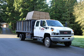 Stump-Removal-Tacoma-WA