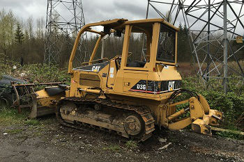 Stump-Removal-clyde-hill-WA