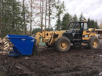 Tree-Removal-Seattle-WA
