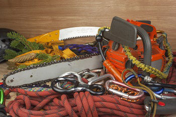 Tree-Service-Company-Tukwila-WA
