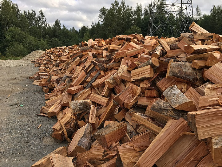 Firewood Pile - Each year we sell hundreds of cords of firewood across the area.