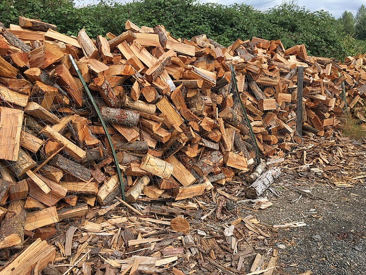 Firewood - We store our wood in these piles so they can air dry over the summer months.