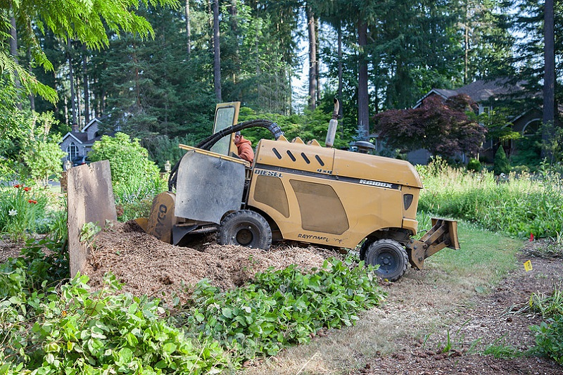 Stump Grinder - This is one of our larger stump grinders. This can grind down stumps in minutes below grade. Why hassle with breaking your back or using chemicals when you can call us for a free estimate.