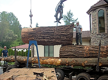 Downed-Tree-Removal-South-Cle-Elum-WA